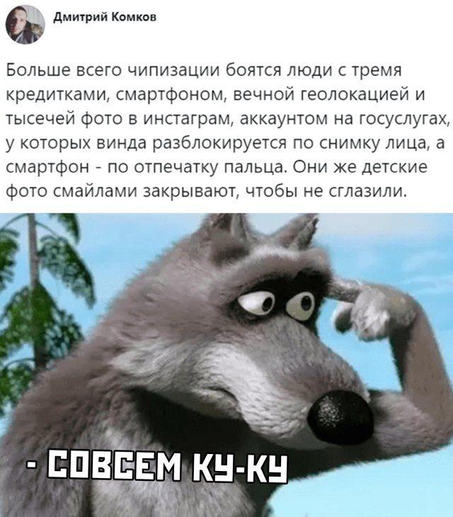 1591311881_podborka-11.jpg
