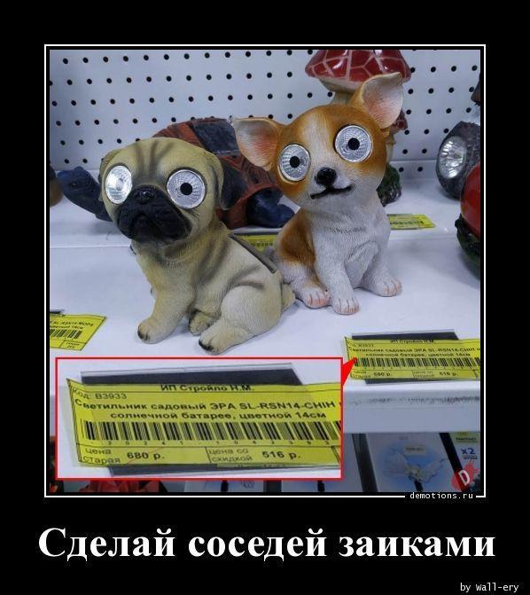 1591339640_demki-2.jpg