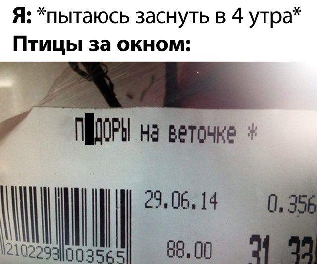 187033_46269.jpg
