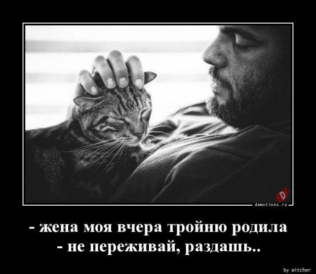 1591771662_demy-10.jpg