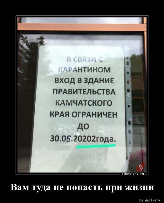 1591771698_demy-2.jpg