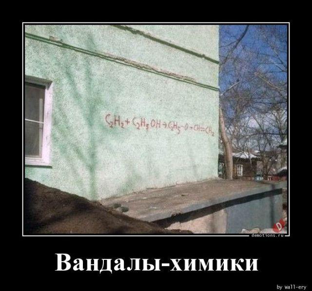 1591771663_demy-3.jpg