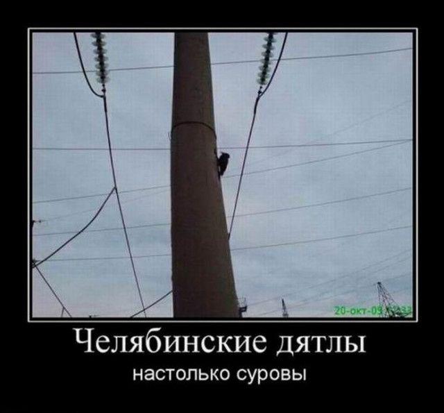 1591771651_demy-12.jpg