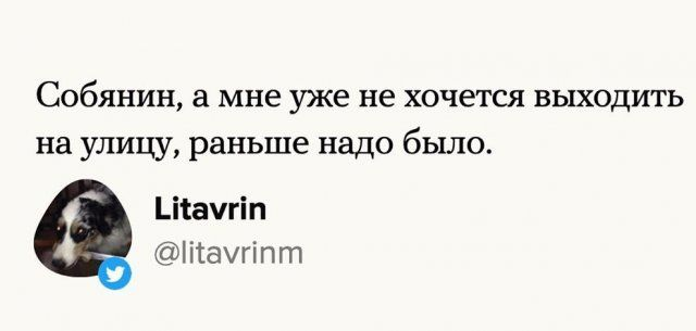 pobedil-koronavirus-karantin-citaty-vkontakte-vkontakte-smeshnye-statusy