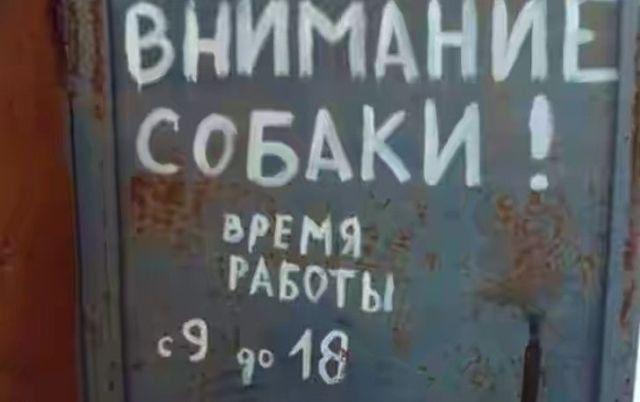 195696_13_trinixy_ru.jpg