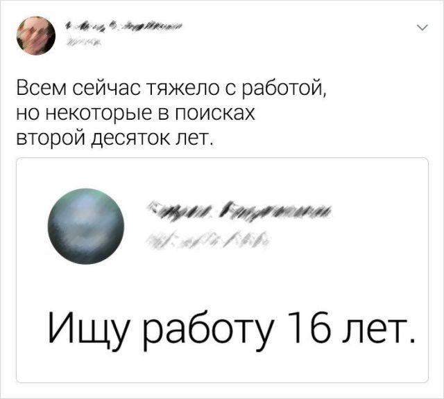 195696_15_trinixy_ru.jpg