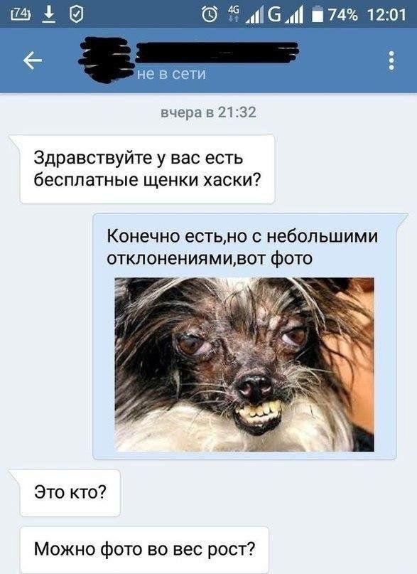 195692_5_trinixy_ru.jpg