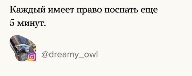 konstitucii-popravki-normalnye-citaty-vkontakte-vkontakte-smeshnye-statusy