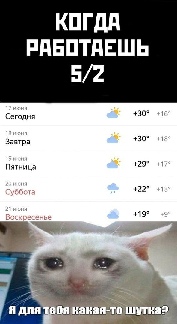otpusk-pobedy-parad-citaty-vkontakte-vkontakte-smeshnye-statusy