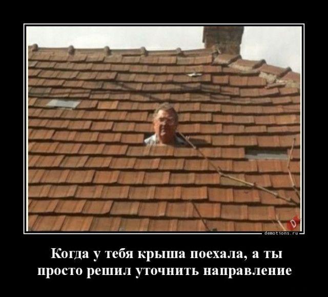 1592895538_demki-1.jpg