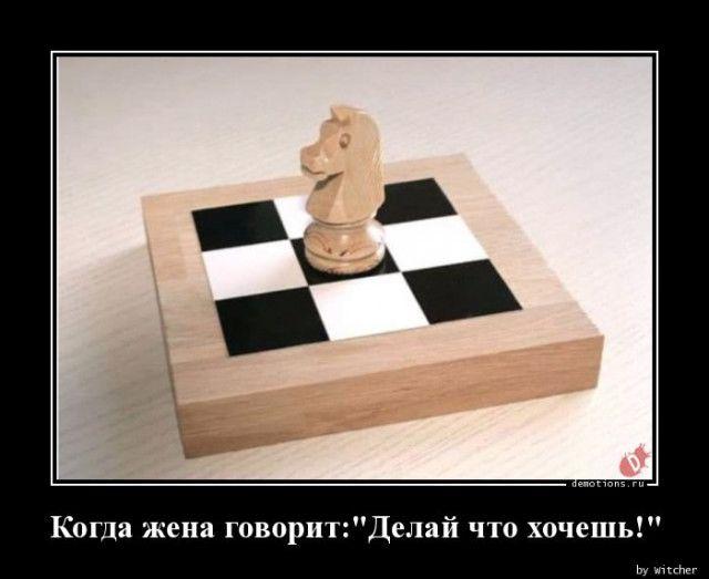 1592895571_demki-27.jpg