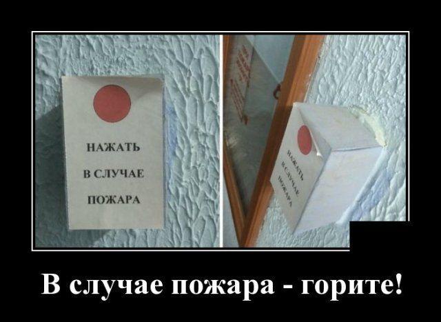 1593175415_demotivatory_11.jpg