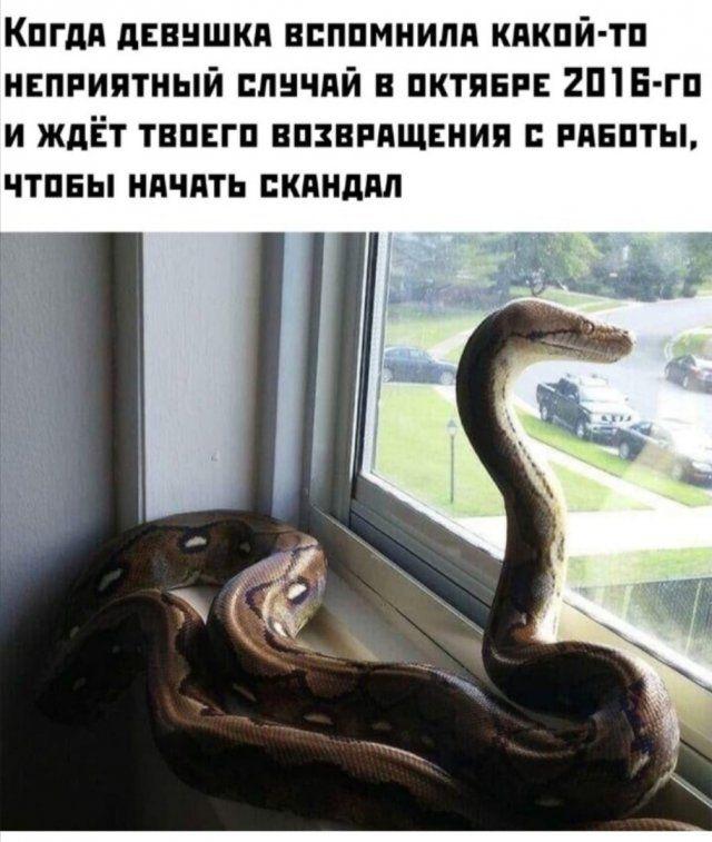 1593354655_0014.jpg