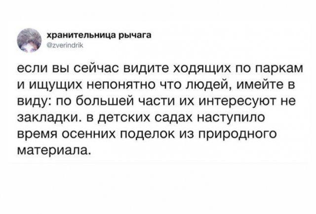 leto-koronavirus-popravki-citaty-vkontakte-vkontakte-smeshnye-statusy