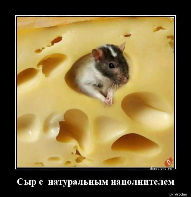 1593672631_demotivatory-4.jpg