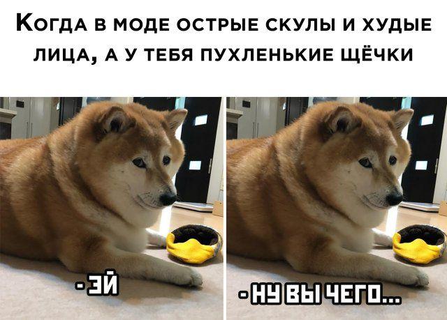 1593718165_0001.jpg