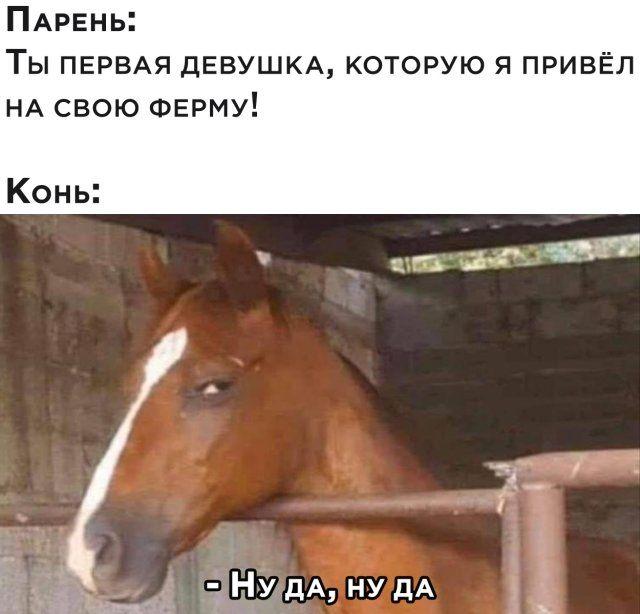 1593879318_prikol-11.jpg