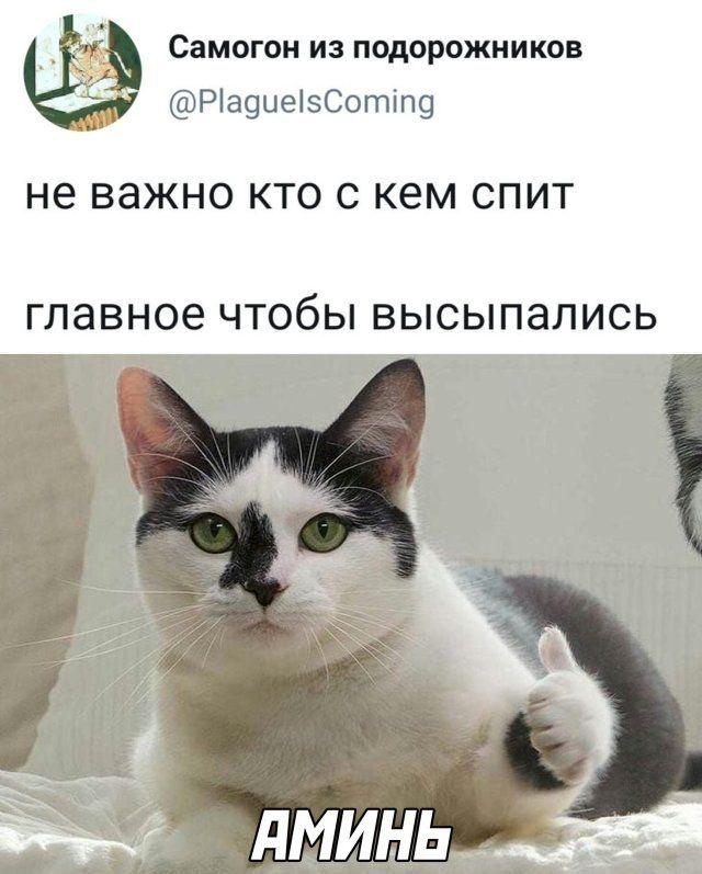 1594165522_kartinki-16.jpg
