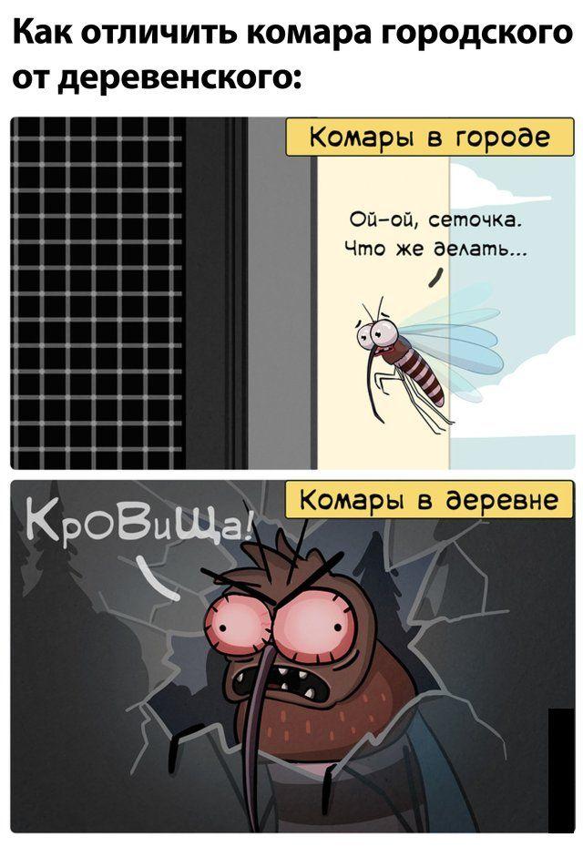1594441979_prikol-18.jpg