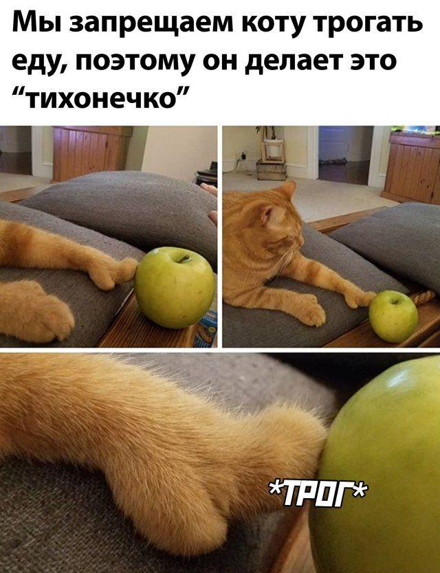 1594323237_0036.jpg