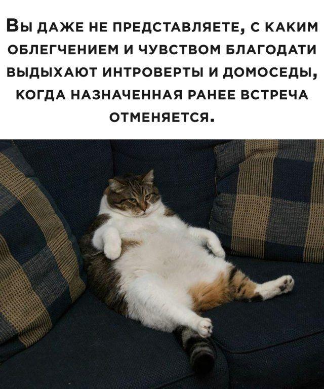 1594048852_podb_vecher_31.jpg