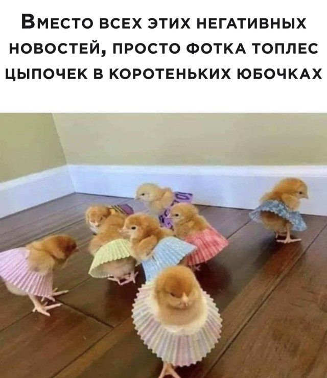 1594048830_podb_vecher_29.jpg