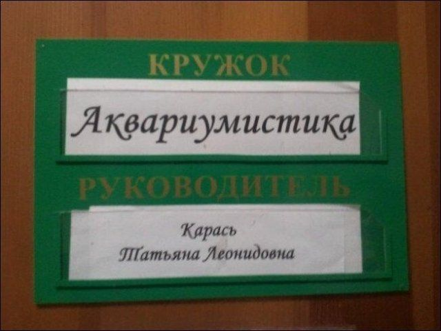 197089_4_trinixy_ru.jpg