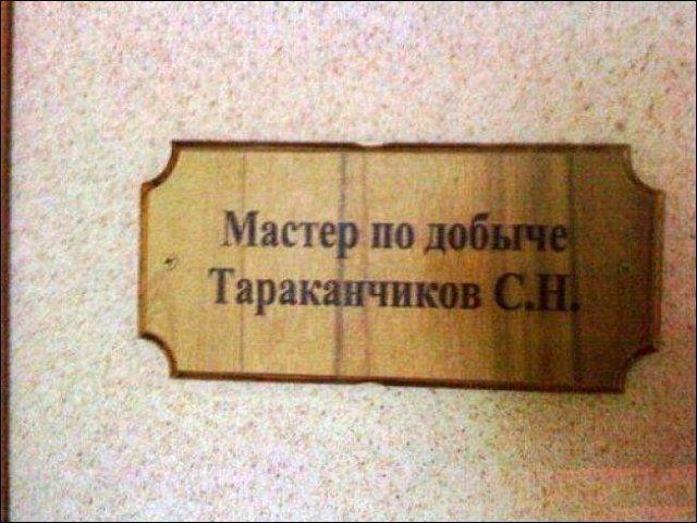197089_11_trinixy_ru.jpg