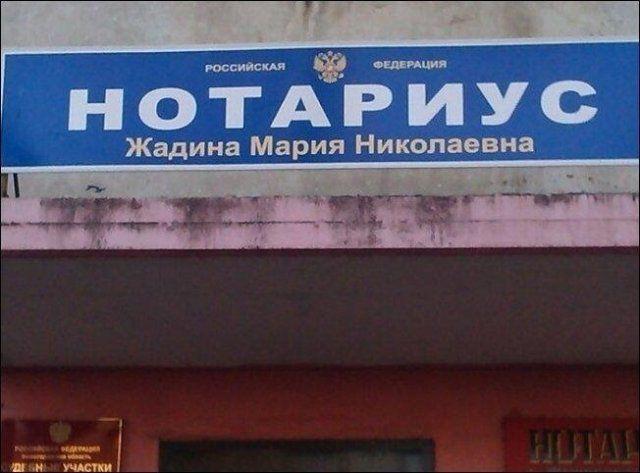 197089_6_trinixy_ru.jpg