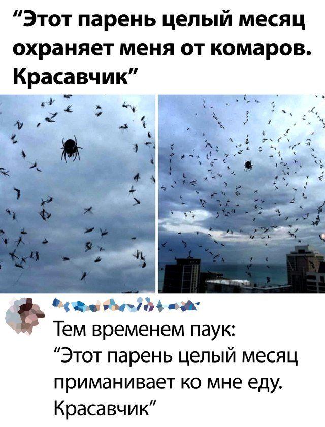 1594719228_rzhaka-30.jpg