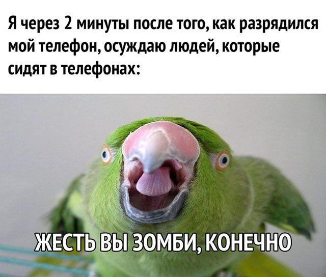 1594800306_smeshno-35.jpg