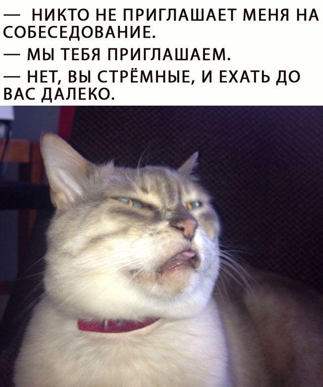 1594800316_smeshno-19.jpg