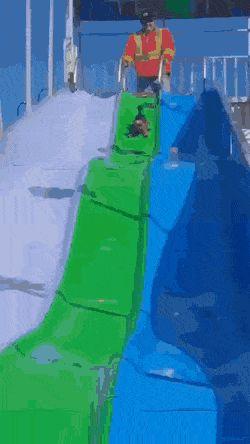 Забавные гифки дня ❘ 25 gif-картинок Приколы,ekabu,ru,вода,гифки,танцы,трюки