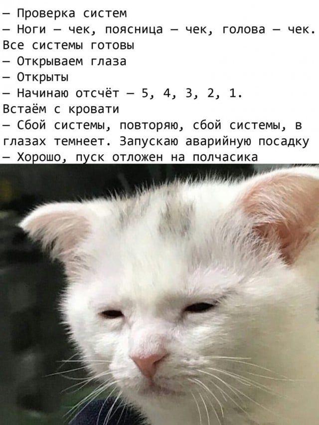 1595541653_kartinka-23.jpg