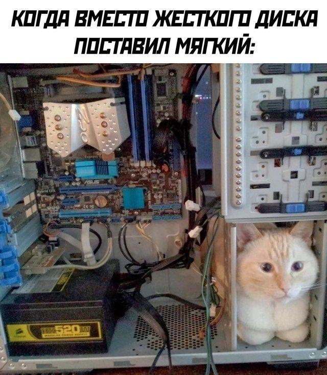 1595541645_kartinka-9.jpg