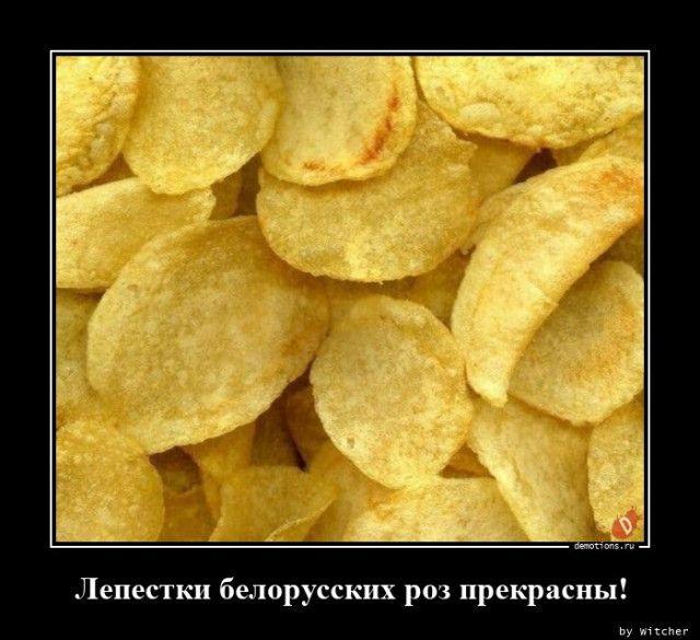 1595487516_demy-8.jpg