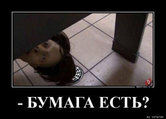 1595487472_demy-4.jpg