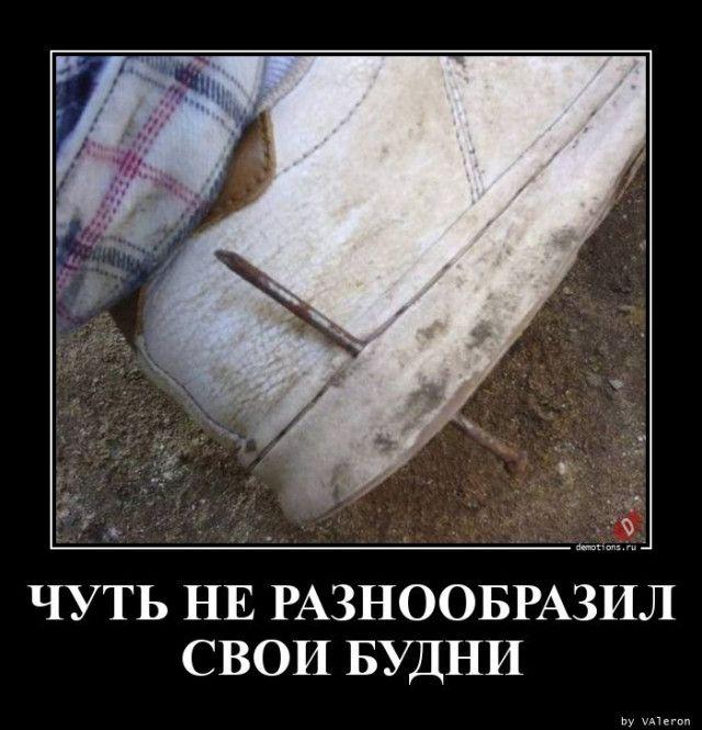 1595573210_demy-7.jpg