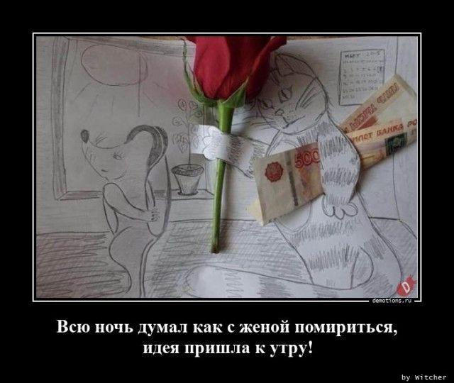 1595573158_demy-13.jpg
