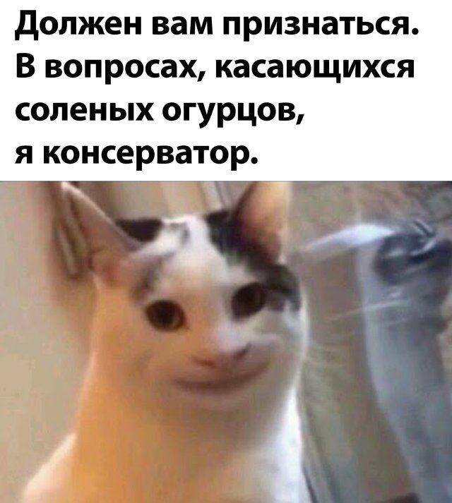 1595234345_podb_02.jpg