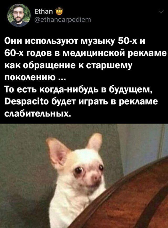 1595234412_podb_29.jpg