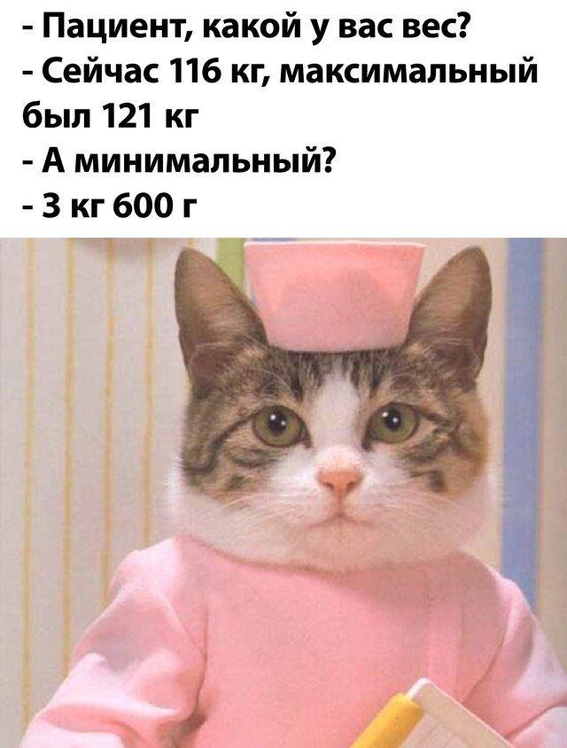 1595234402_podb_26.jpg