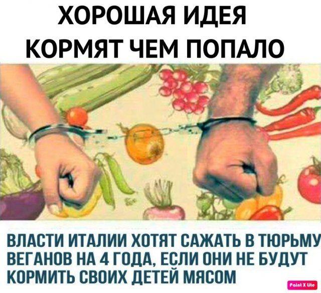 yazhmaterey-memy-istorii-citaty-vkontakte-vkontakte-smeshnye-statusy