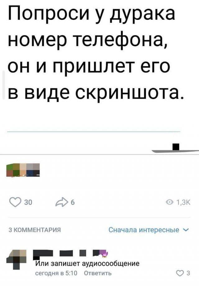 golosovye-soobscheniya-setey-citaty-vkontakte-vkontakte-smeshnye-statusy