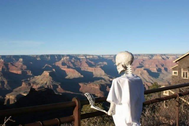 скелет в футболке смотрит на гранд каньон