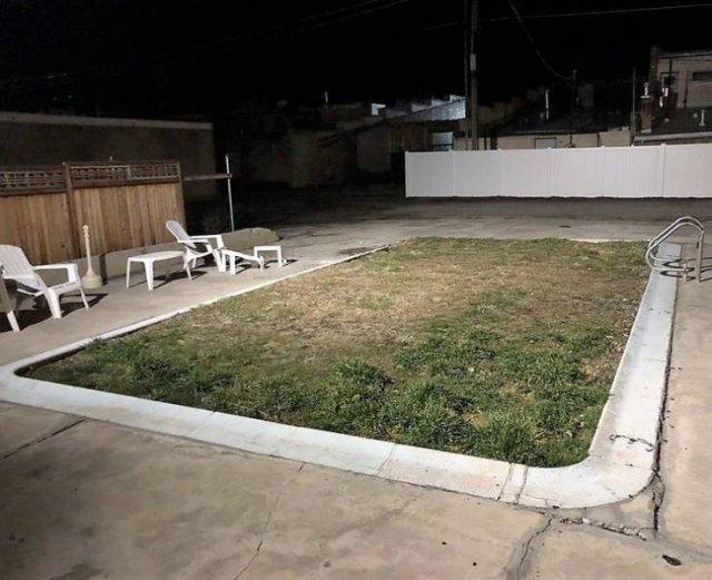 бассейн зарос травой