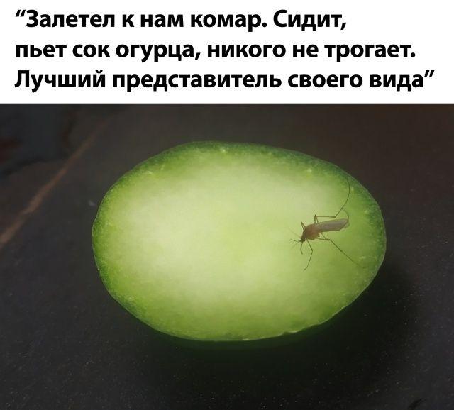 1596134326_0034.jpg