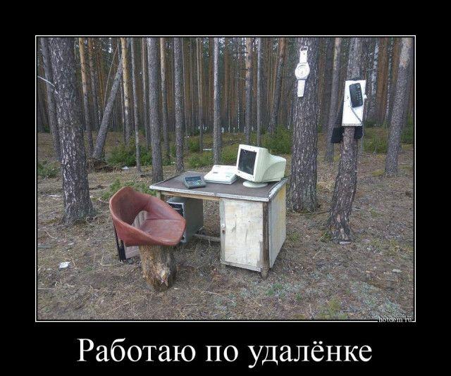 1596611509_demotivatory-4.jpg