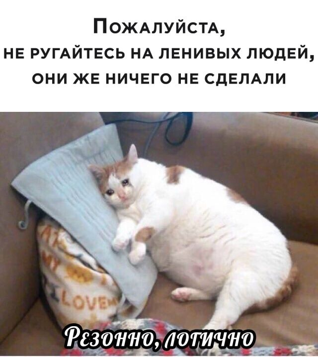 1596829667_lol-26.jpg