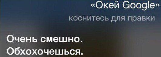 198806_2_trinixy_ru.jpg